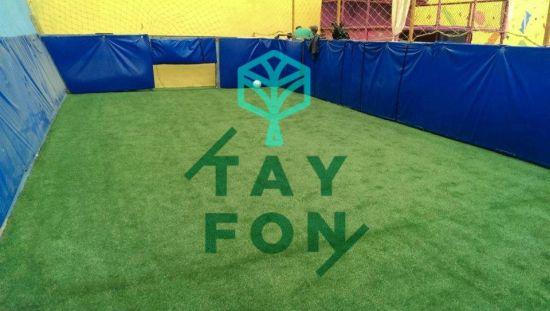 Tayfon, pasto sintetico